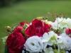 Focus-kvety