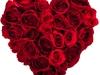 valentine-quotes1
