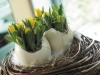 tulipany-vo-vajickach